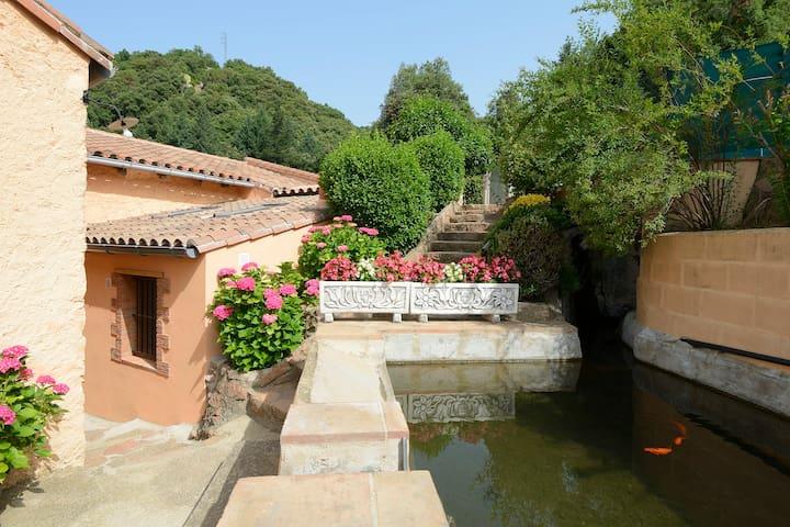 T.Rural Mas Romeu.EL MIRADOR.Registro PG519 - Arbúcies