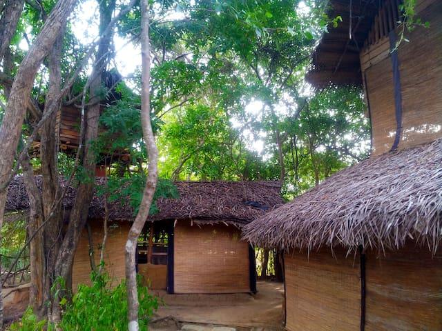 Tree hut habarana Loola Eco MANEL
