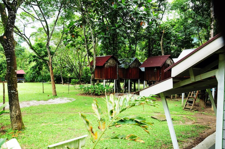 Unique Tree House Jungle Experience - Gopeng - Domek na drzewie