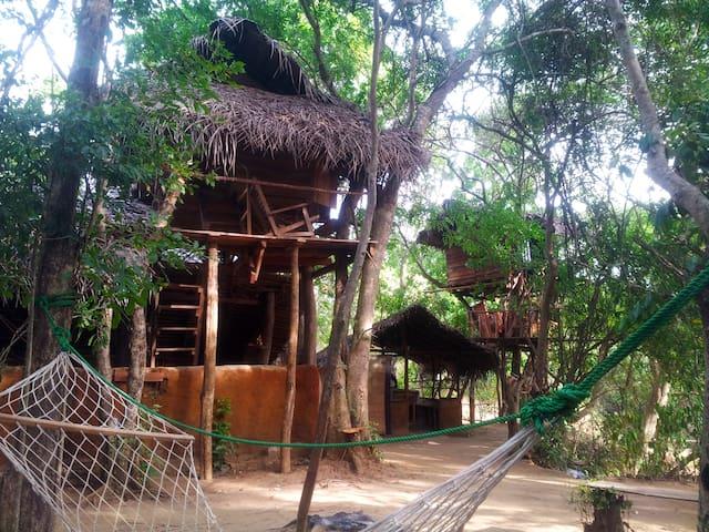 Tree hut habarana Loola eco OLU