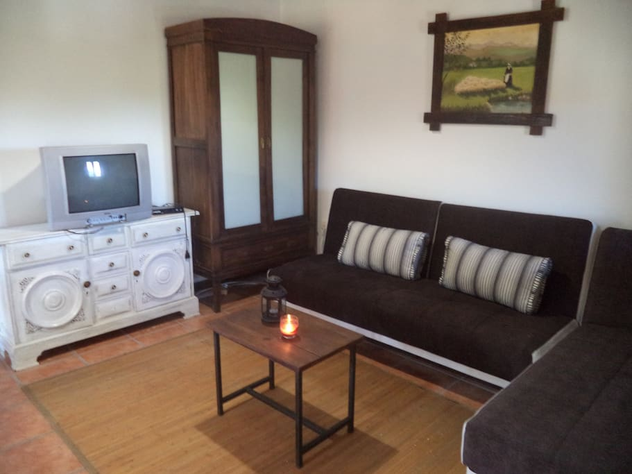 sofas cama de 2 y 1 plaza respectivamente