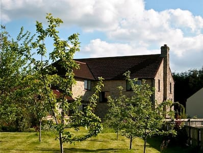 Meadow View Organic Culinary B&B nr Bath and Wells - Bishop Sutton