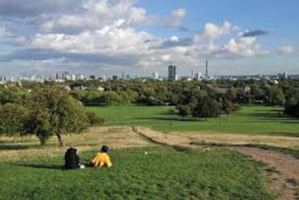 The view from the top of Primrose Hill