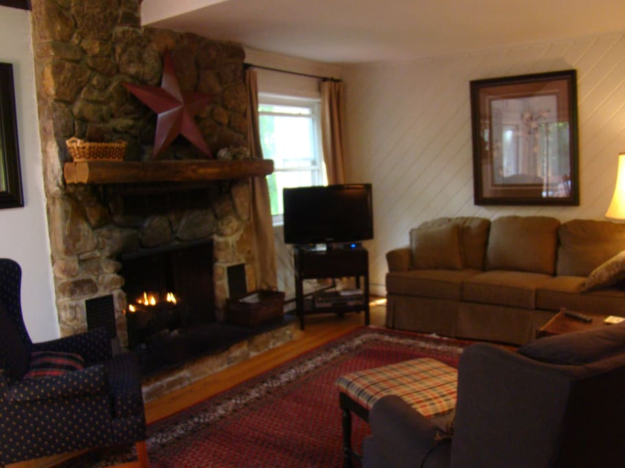 Living area with remote controlled gas fireplace.