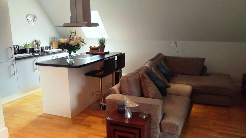 Private, double bedroom in Hampton - Hampton - Apartment