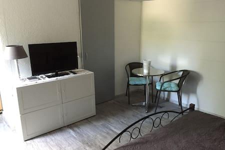 Studio dans un villa individuelle - Domdidier - Apartment