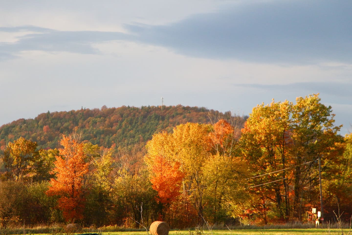 The view from our garden in the fall.