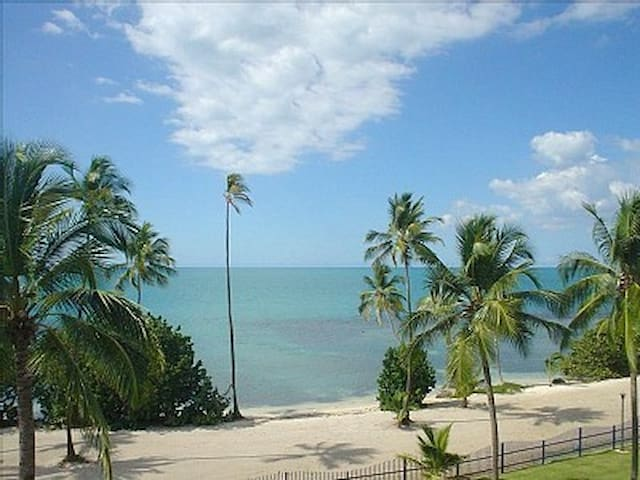 Penthouse Condo on the Beach - Cabo Rojo - Daire
