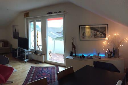 Lovely attic flat above Zurich - Zollikon - Apartament
