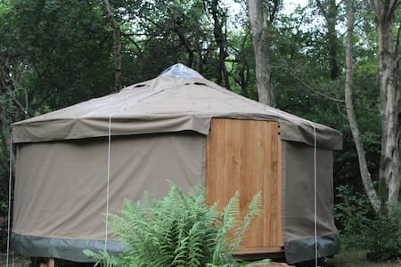 Yurt luxury woodland camping - Jurta