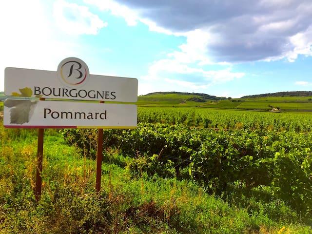 Maison en plein coeur de Pommard - Pommard - Hus