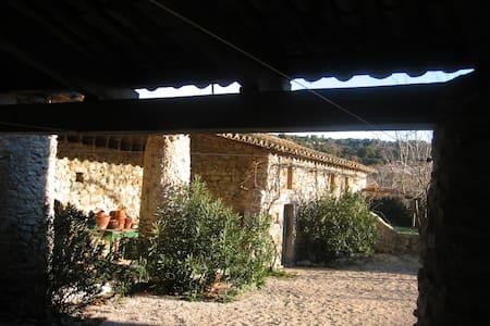Maison ancienne pleine de charme - LUSSAN - Villa