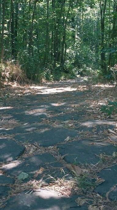 La via Sacra nei pressi del Monte Cavo