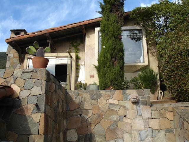 Arriendo preciosa casa en Zapallar