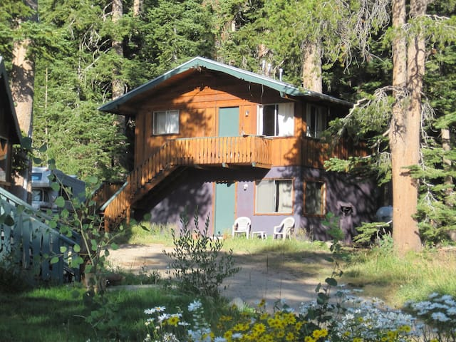 Vintage Cabin #4 Old Mammoth - Mammoth Lakes - Cottage