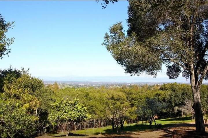 HILL HOUSE - Los Altos - Rumah