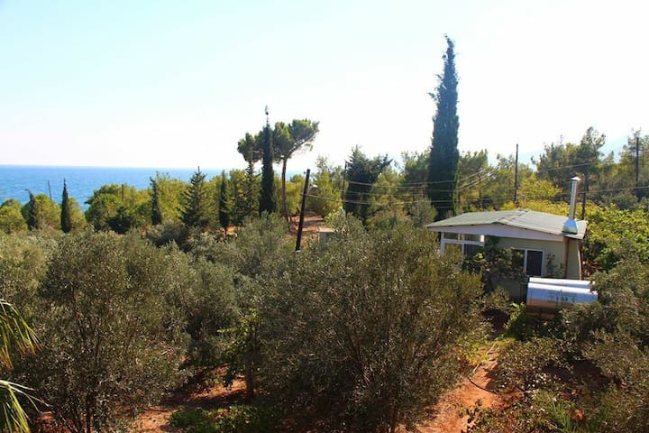 Peaceful and natural holiday place - Mersin - Casa