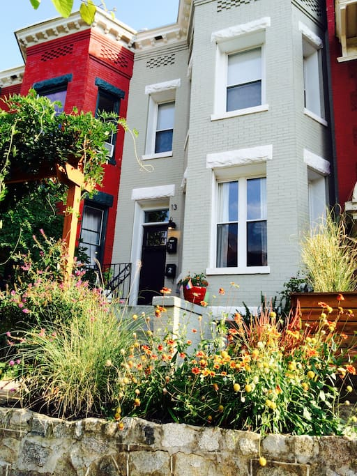 Front entry to our historic, but recently renovated, DC rowhouse.