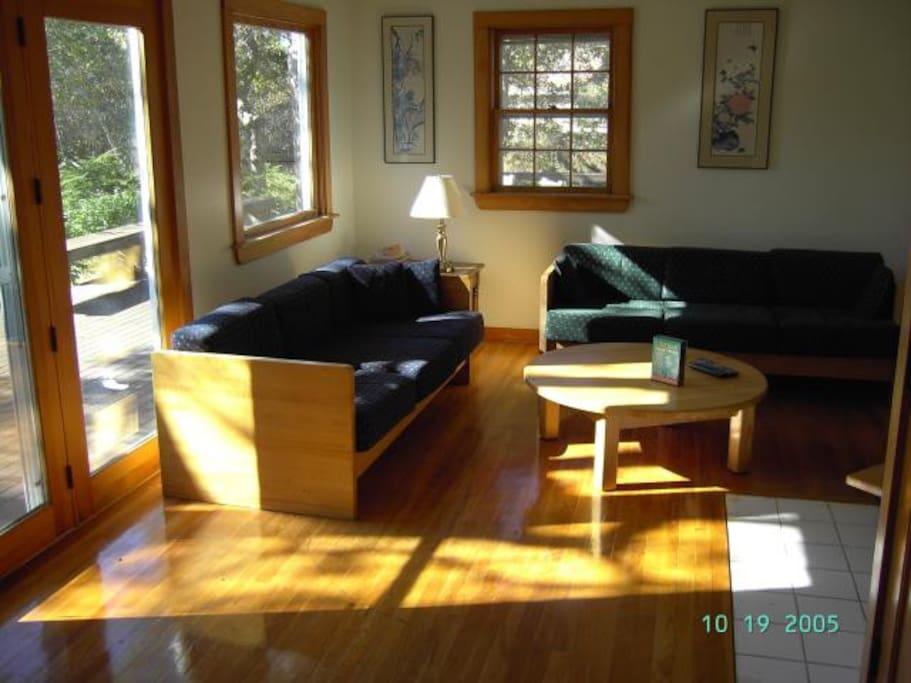 Living Room with full sun