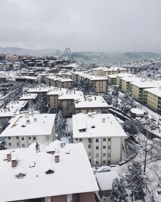 The view in winter time :)