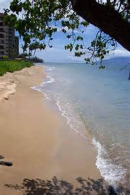 Sands of Kahana beach across the street