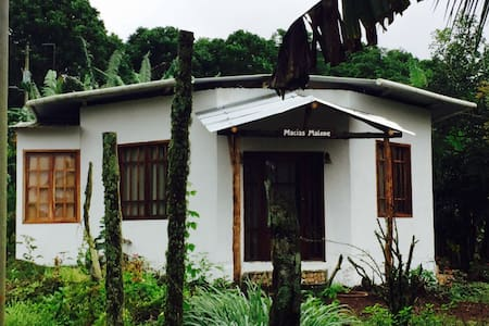 Eco friendly house on the Galapagos - Huis