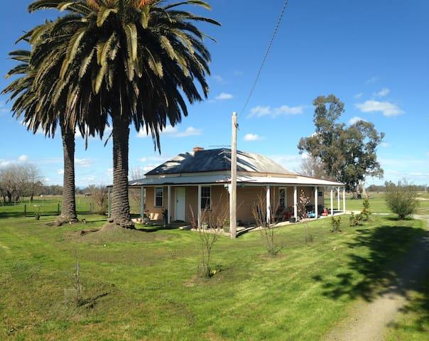 Twin Palms Farm Cottage - Docker - Haus