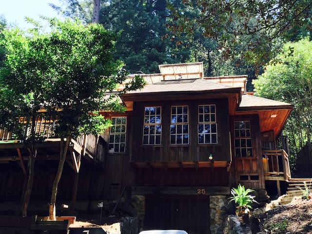 Magical Mount Hermon Cabin! - フェルトン - 一軒家