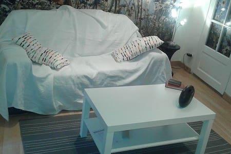 Studio douillet 20 m2 Lyon 8 - Lyon