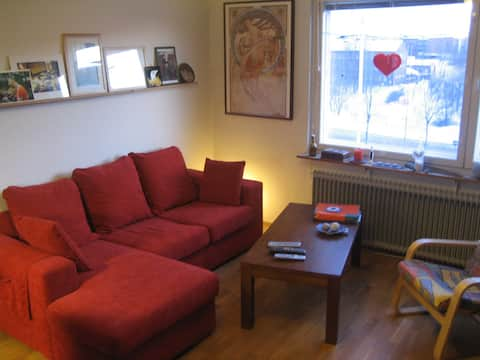 Top floor apartment in Oulu city centre