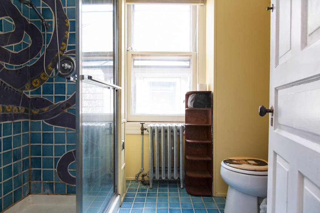 Your bathroom. Walk-in shower, octopus mosaic and toilet seat with Elvis painted on it included.