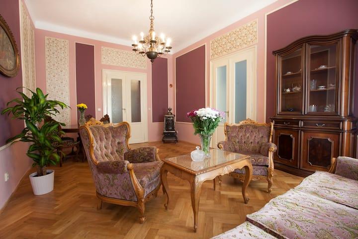 Prague historical center luxury apt