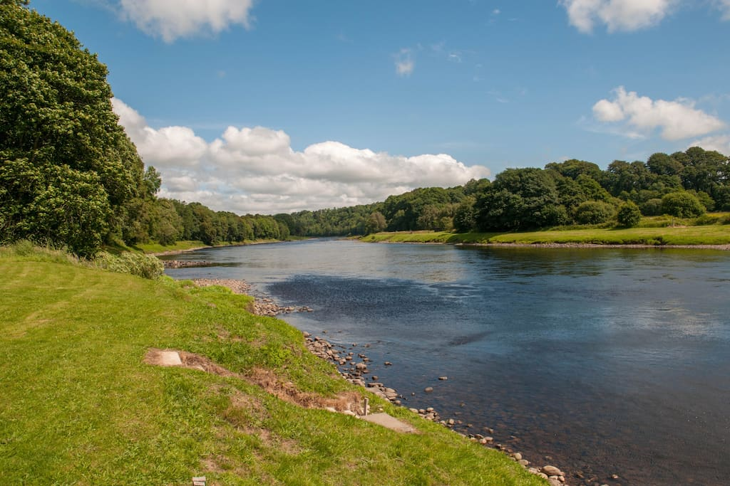 River Tay 2 minute walk at the rear