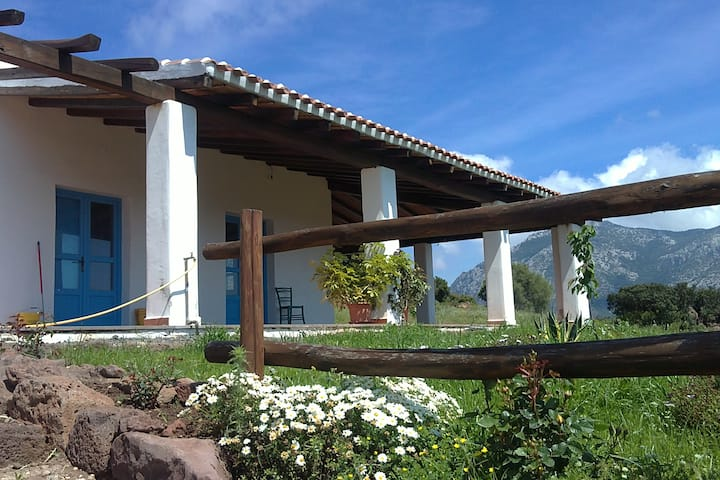 Agricamping Su Nuragheddu, bungalow vista mare