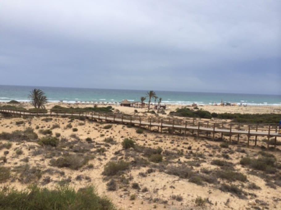 Playas de Arenales del Sol, Elche
