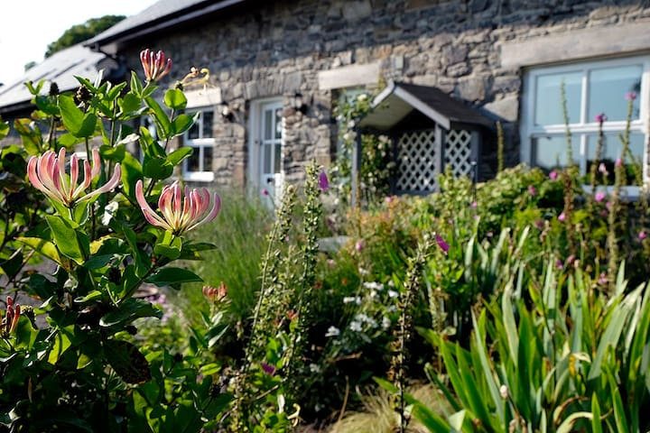 The Old Bar(URL HIDDEN)Suite 2 - Llanrhystud - Bed & Breakfast