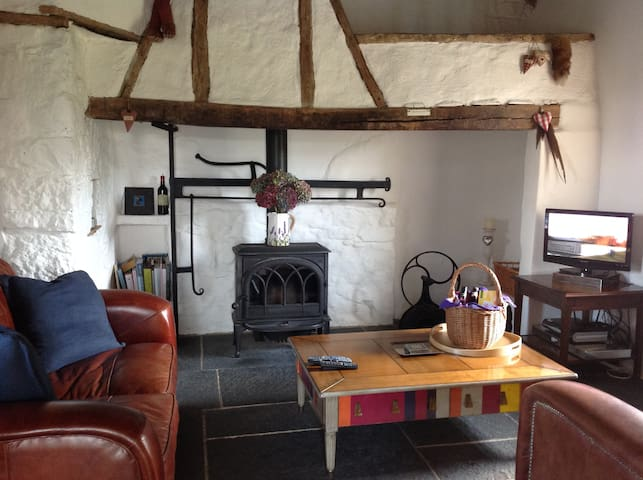 Restored 5*Thatched cosy country farm cottage - Knocklong