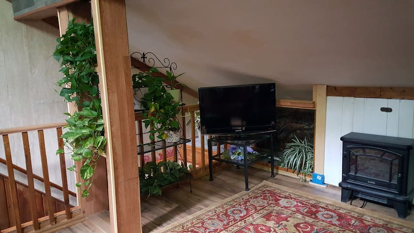 Roku Tv and electric fireplace in living area.