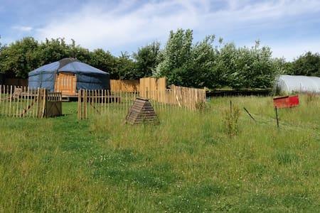 Moonacre Yurt - Yurt
