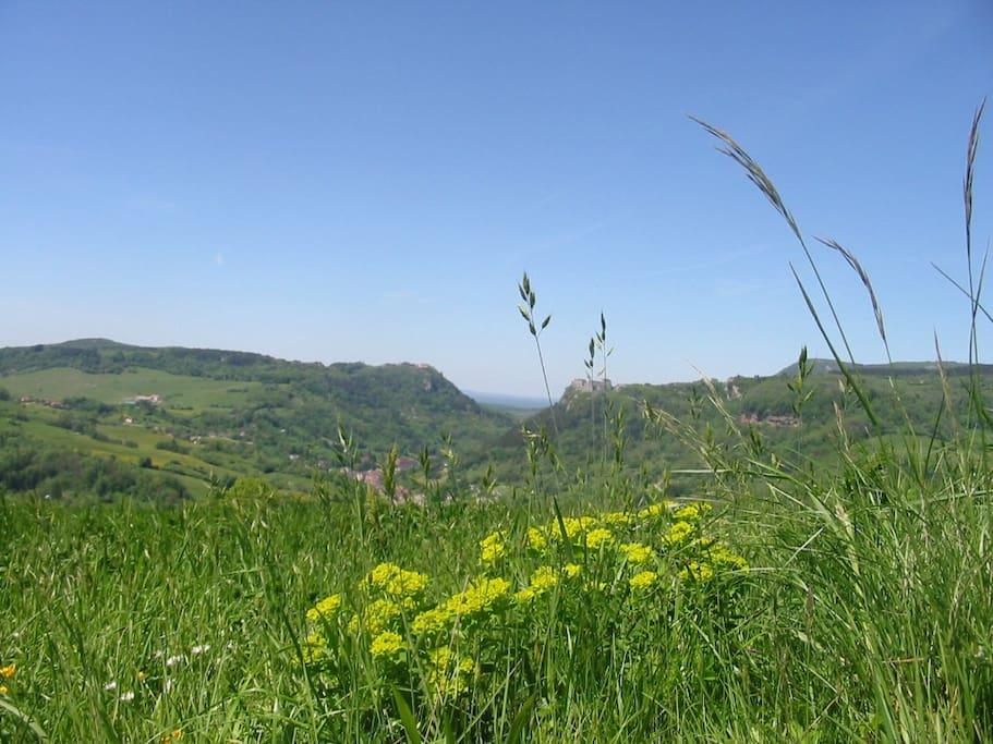 Vue de Salins-Les-Bains avec ses 2 forts.