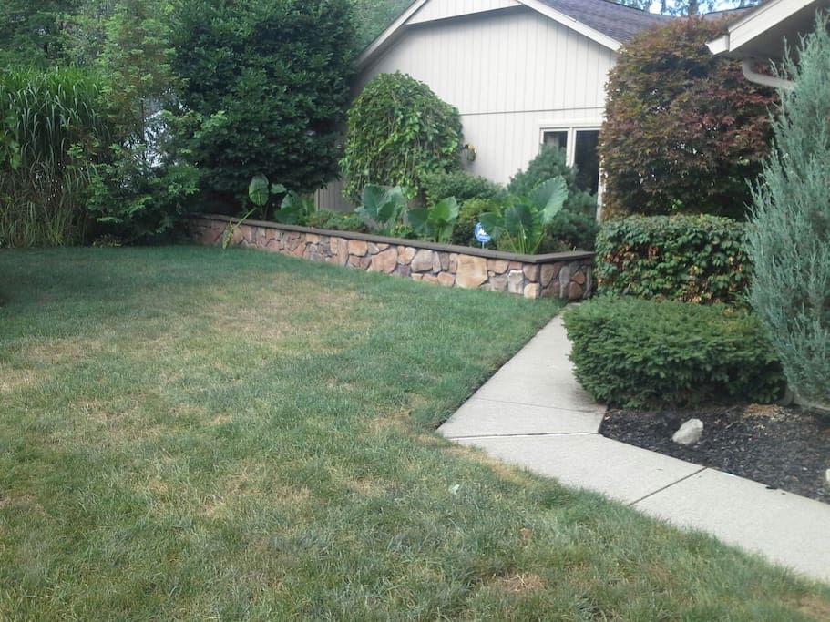 Landscaping - front