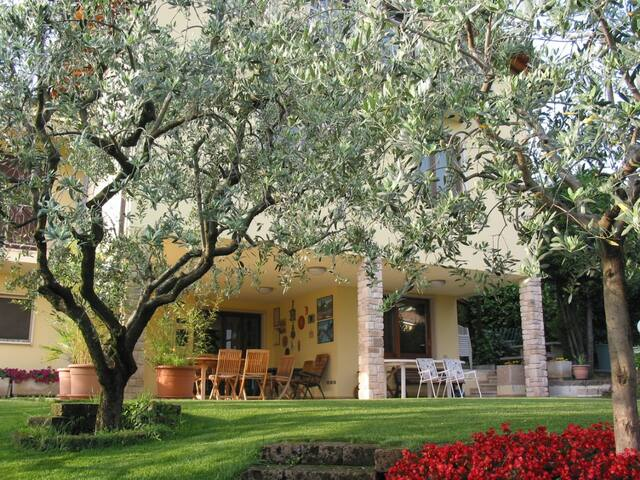 B&B VIVALDI - San Pietro In Cariano - Bed & Breakfast