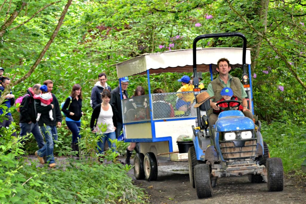 Tractor & Trailor morning runs to feed all the animals on the farm perfect for any tractor loving toddler.