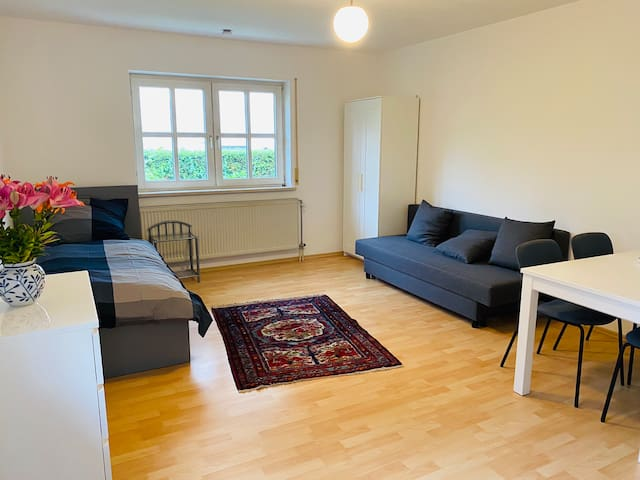 Separated furnished single room apartment