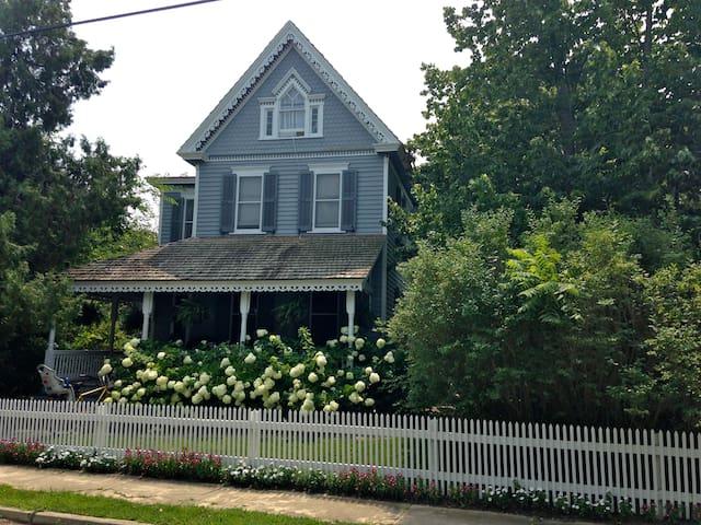 Gorgeous house and gardens - sleeps 10.