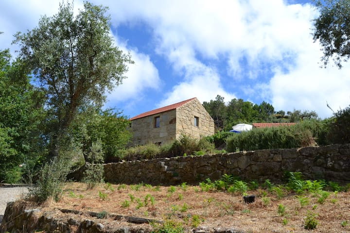 Douro Country House (8pax) - Resende - Townhouse