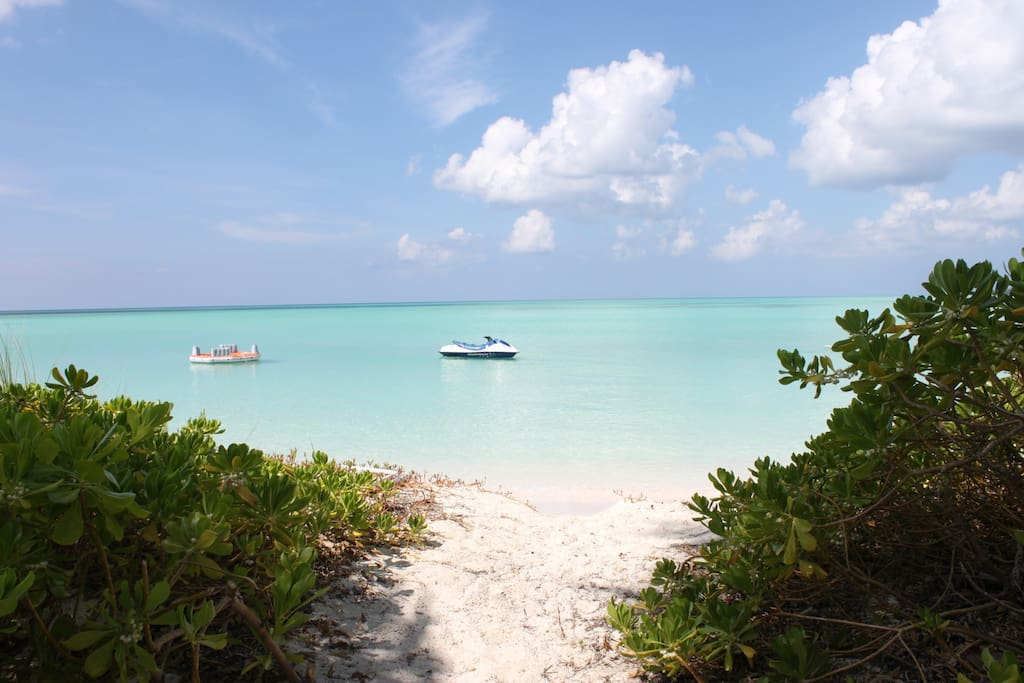 The beautiful clear, healing waters of the Bahamas