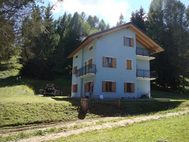Ground floor apartment in the Dolomites - Arina - Apartament