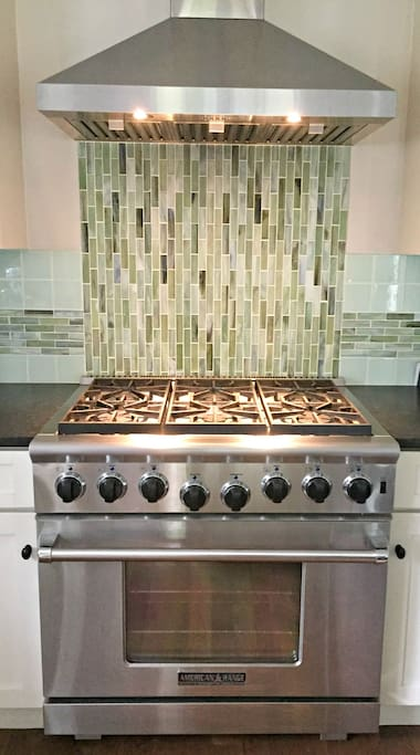 Professional 6 burner gas range and oven