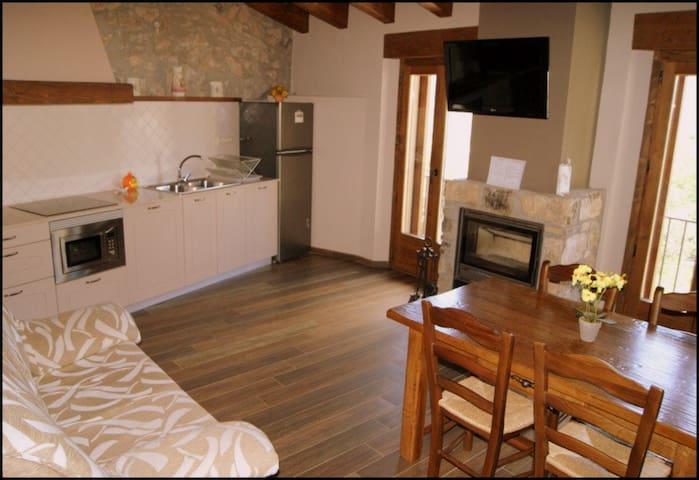 Apartaments Rurals Cal Remolins x4 - Coll de Nargó - Apartament
